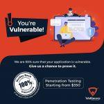 vapt-services-penetration-testing.jpg