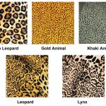 animal-print.jpg