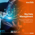 big-data-management-company-dubai-uae-euclidz.jpg